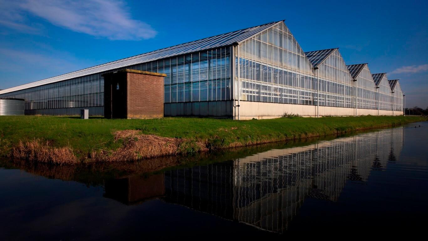 Fotografie kassen Greenport Noord Holland Noord